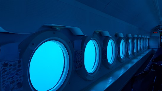 Portholes - Photo by Technicalbob